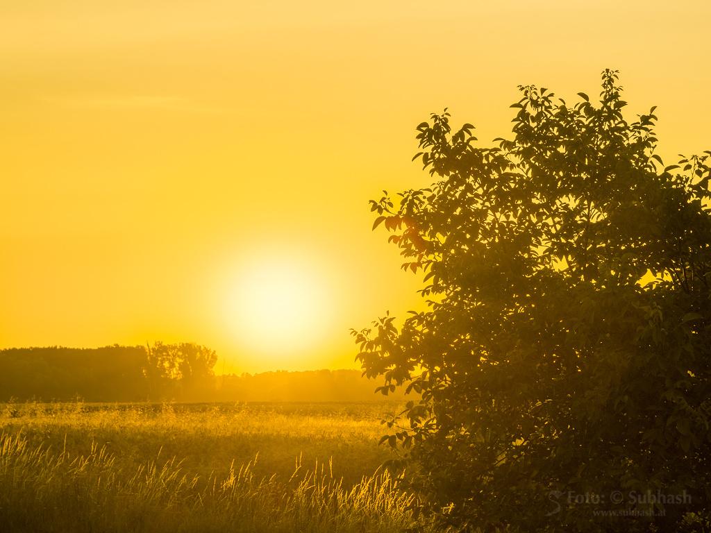 """Subhash: """"Sonnenaufgang #9712-16v2"""""""