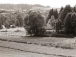 """Subhash: """"Fotospaziergang um den Brühlteich in Schwarzenau #5264"""""""