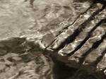Subhash: «En el lago #1316»