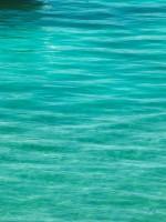 Subhash: «En el lago #1473»