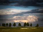 """Subhash: """"Abend, Wolken #7122"""""""