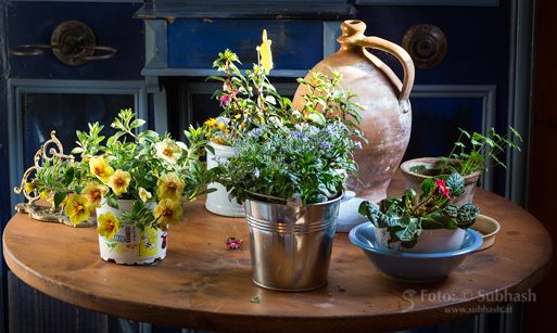 "Subhash: ""Flower table #8034"""