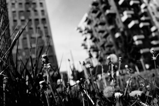 Eine Fotografie von Bruno Linher