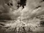Subhash: «Cielo negro #117_2»