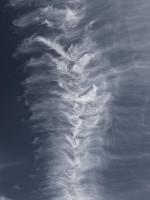 Subhash: «El espinazo celestial #7096»