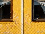 """Subhash: """"Fenster #7162"""""""