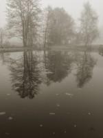 Subhash: «La niebla #803»