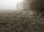 Subhash: «La niebla #840»