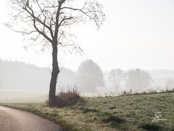 """""""Morgenstimmung #2063"""" (vor der Ausarbeitung)"""