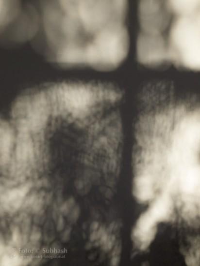 """Subhash: """"Schatten an der Wand #9410"""""""
