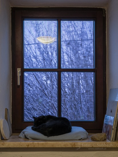 Subhash: «Tarde de invierno #4542»