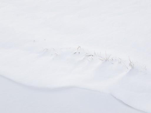 """Ausgangsbild zu """"Winter #7146"""""""