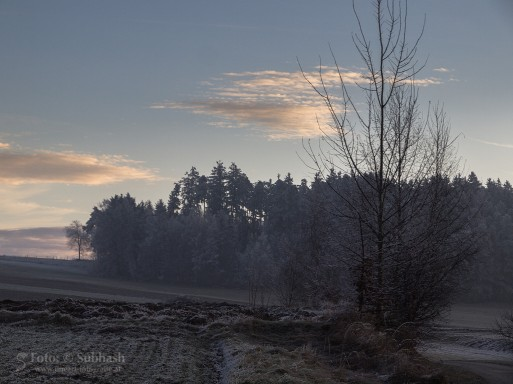 "Subhash: ""Wintermorgen #7412"""